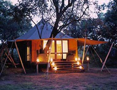 Ngala Tented Safari Camp